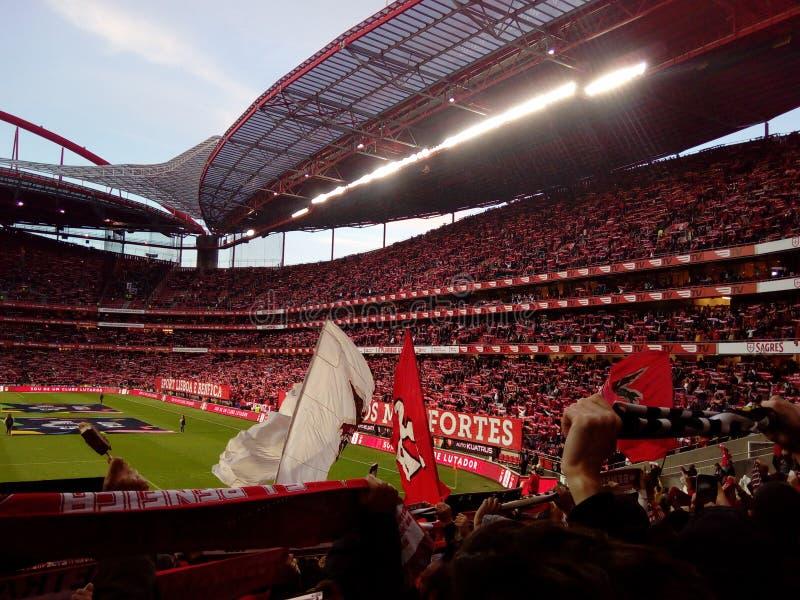 Το στάδιο ποδοσφαίρου, χώρος ποδοσφαίρου Benfica, πραγματικοί ανεμιστήρες συσσωρεύει, Estadio DA Luz, Λισσαβώνα στοκ φωτογραφία με δικαίωμα ελεύθερης χρήσης