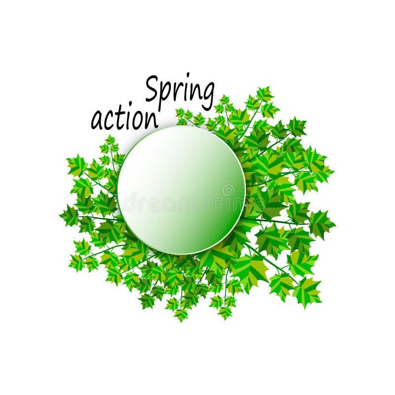 Το στεφάνι του πράσινου ελατηρίου αφήνει τη διανυσματική απεικόνιση διανυσματική απεικόνιση