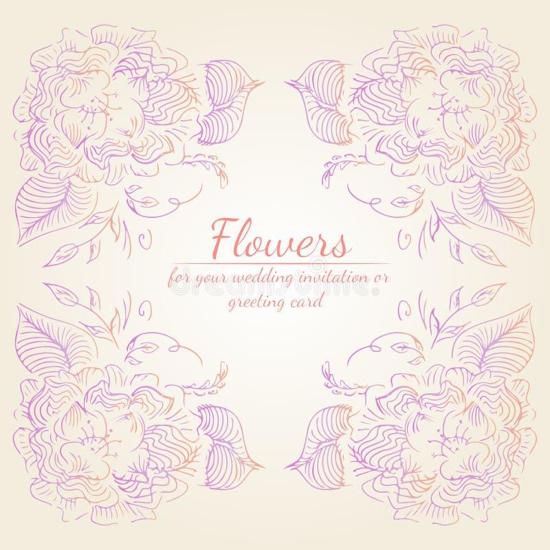 Το στεφάνι των τριαντάφυλλων ή peonies των λουλουδιών διακλαδίζεται με το ροζ, την πορφύρα και τα χρώματα κοραλλιών Floral στοιχε ελεύθερη απεικόνιση δικαιώματος