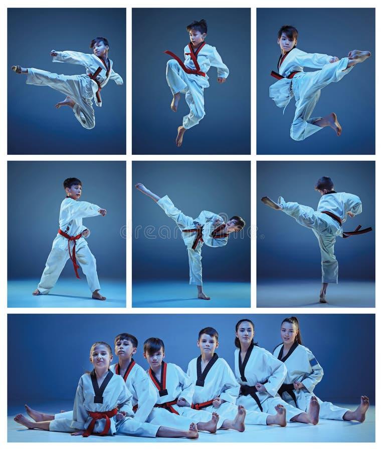 Το στούντιο που πυροβολείται της ομάδας παιδιών που εκπαιδεύουν karate τις πολεμικές τέχνες στοκ φωτογραφία