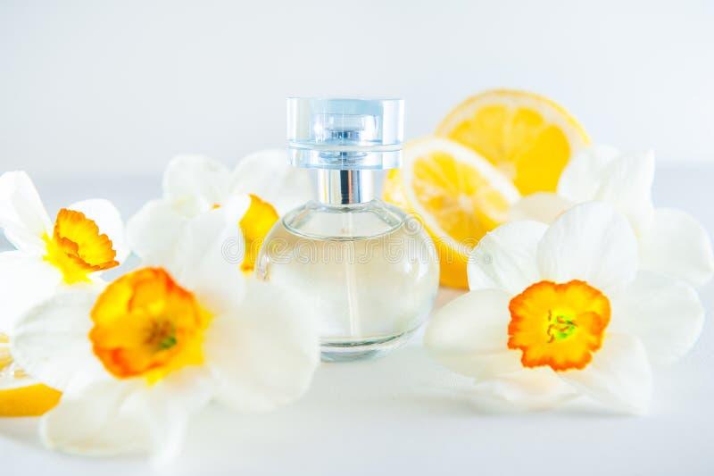 Το σφαιρικό μπουκάλι αρώματος που περιβάλλεται από φρέσκο Daffodils ανθίζει και λεμονιών φέτες που απομονώνονται στο άσπρο υπόβαθ στοκ εικόνες με δικαίωμα ελεύθερης χρήσης