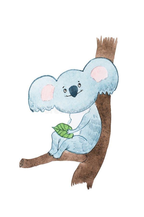 Το σχέδιο ακουαρελών του ονειροπόλου koala κινούμενων σχεδίων αφορά μια συνεδρίαση άδειας έναν κλάδο δέντρων διανυσματική απεικόνιση
