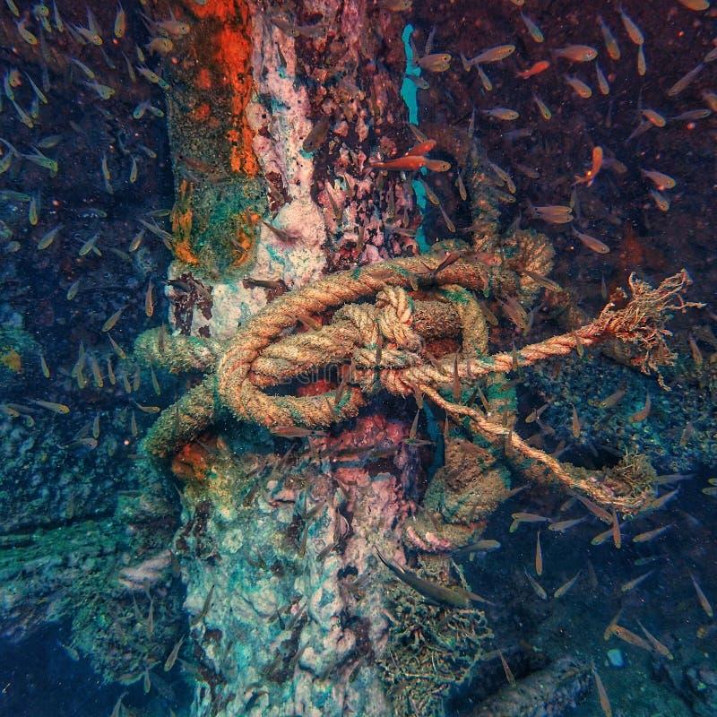 το σχοινί δένει στον καλάμι πάνω από το ναυάγιο  και η βαθιά γαλάζια κατάδυση στοκ εικόνες