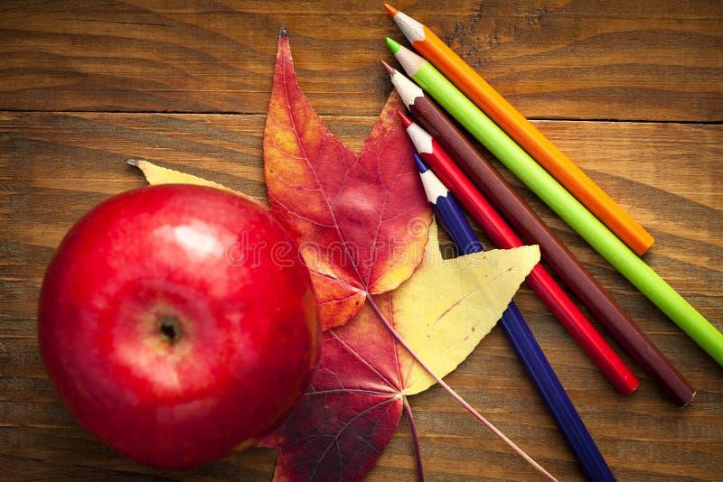 το σχολείο χρωμάτισε τα μολύβια και τα φύλλα φθινοπώρου στοκ εικόνες