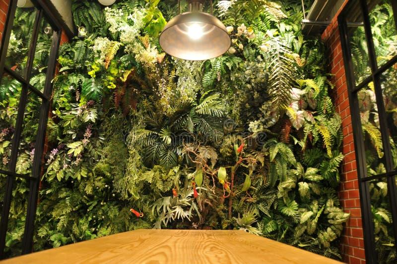 Το σύγχρονο εσωτερικό τοίχων ενός εγχώριου κήπου γέμισε πολλές τροπικές εγκαταστάσεις στοκ εικόνες