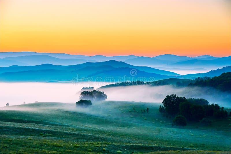 Το σύννεφο και η υδρονέφωση στο λιβάδι στοκ εικόνες
