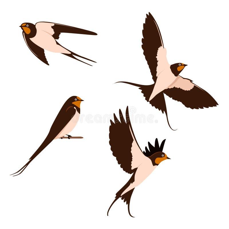 Το σύνολο καταπίνει τη διανυσματική απεικόνιση Ζωικό εικονίδιο πουλιών στοκ εικόνα