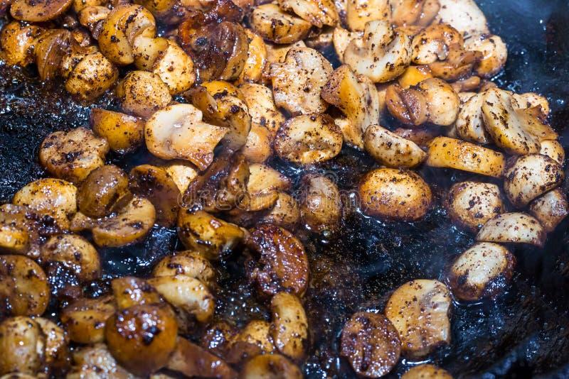 Το σύνολο τεμάχισε ψημένο champignon που καρυκεύτηκε με τα μέρη του σχεδίου βάσεων σάλτσας μανιταριών σουπών με κρέας λαχανικών στοκ φωτογραφίες