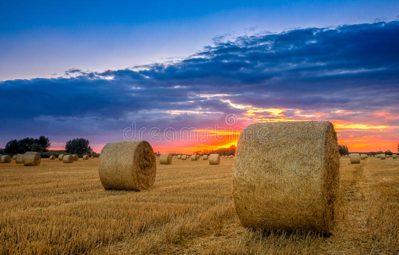 Το τέλος της ημέρας πέρα από το πεδίο με το δέμα σανού στην Ουγγαρία αυτή η φωτογραφία κάνει στοκ εικόνα