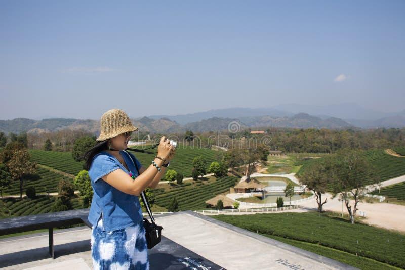 Το ταϊλανδικό ταξίδι γυναικών και παίρνει τη φωτογραφία στο σημείο άποψης του τοπίου των φυτειών τσαγιού Choui Fong σε Doi Mae Sa στοκ εικόνες