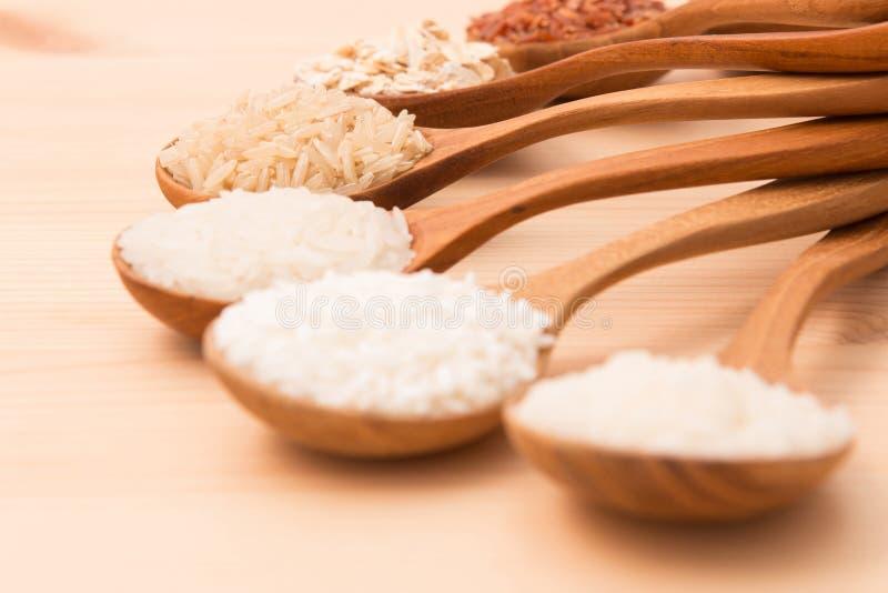 Το ταϊλανδικό ρύζι φορτίου είναι η δημιουργία του ταϊλανδικού ρυζιού eaperts και Jap στοκ εικόνα με δικαίωμα ελεύθερης χρήσης