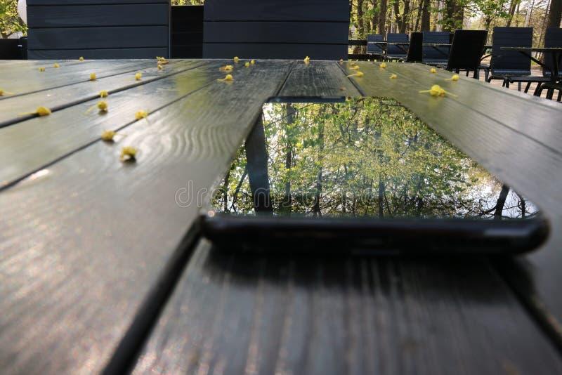 Το τηλέφωνο οθονών επαφής είναι στον πίνακα και απεικονίζει τα δέντρα στο πάρκο στοκ εικόνες