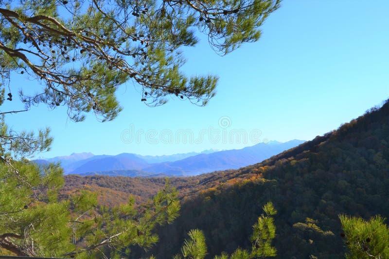 Το τοπίο βουνών φθινοπώρου με έναν αετό λικνίζει στοκ εικόνα με δικαίωμα ελεύθερης χρήσης