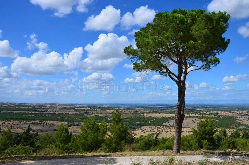 Το τοπίο γύρω από το κάστρο Castel del Monte στοκ εικόνες