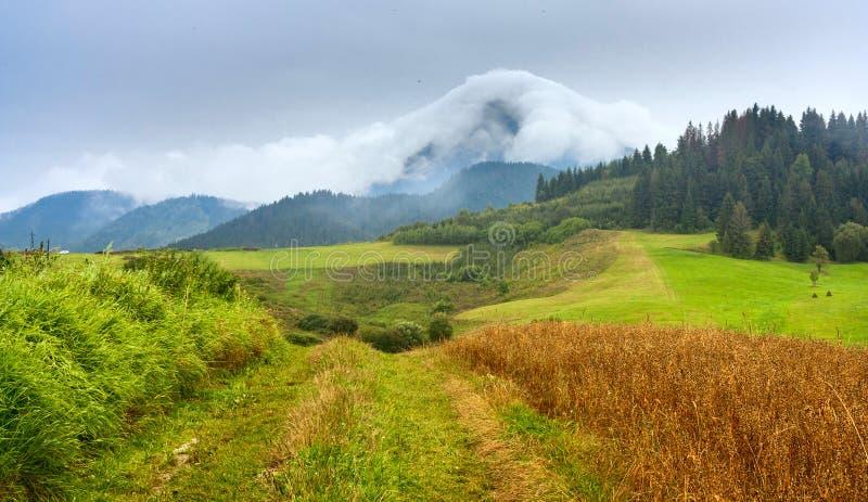Το τοπίο καλοκαιριού με το βρώμικο δρόμο και η άποψη καλυμμένος με τα άσπρα σύννεφα τοποθετούν Velky Choc μεγάλο Choc στη Σλοβακί στοκ φωτογραφία