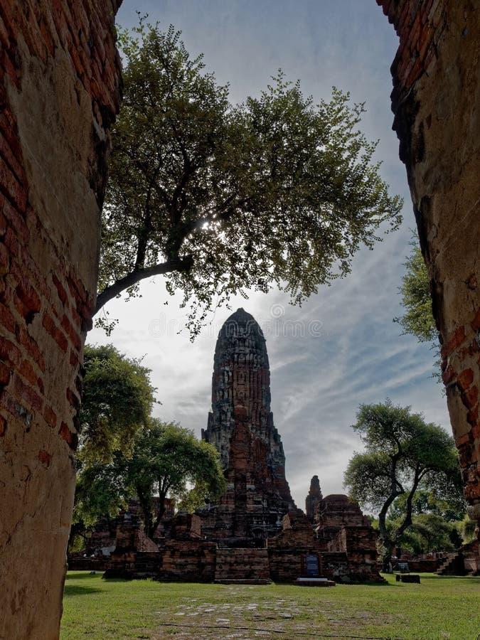 Το τοπίο της κύριας αίθουσας παγοδών και χειροτονίας Wat Phra χώνει το ναό, Ayutthaya, Ταϊλάνδη στοκ φωτογραφίες με δικαίωμα ελεύθερης χρήσης