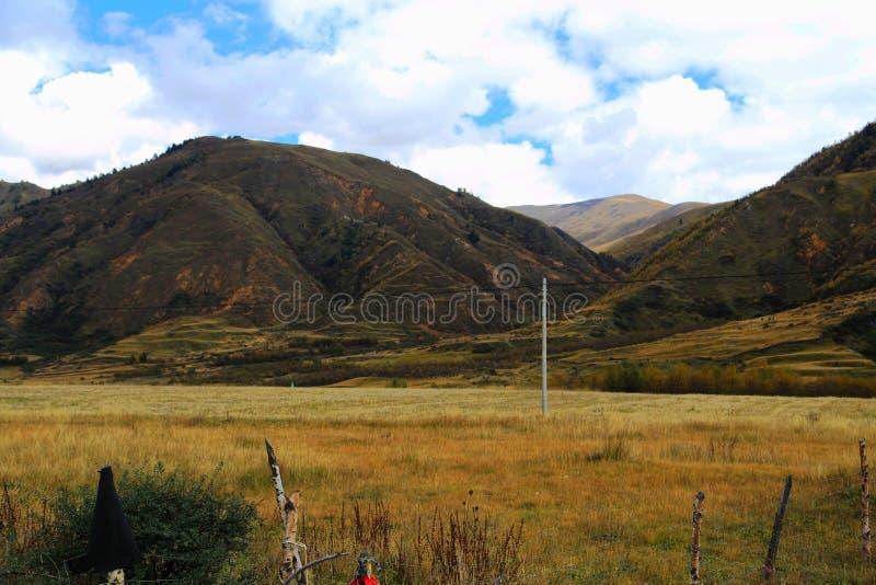 Το τοπίο φθινοπώρου στο δρόμο στο οροπέδιο Qinghai Θιβέτ στοκ φωτογραφίες με δικαίωμα ελεύθερης χρήσης