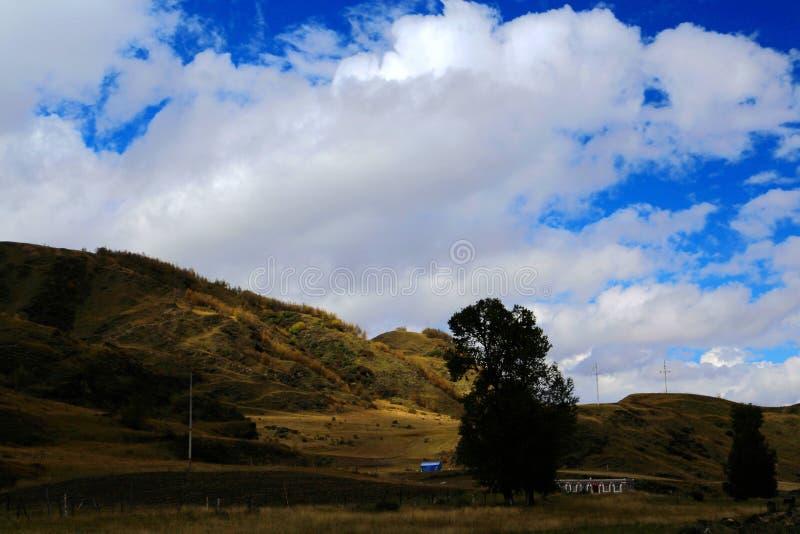 Το τοπίο φθινοπώρου στο δρόμο στο οροπέδιο Qinghai Θιβέτ στοκ εικόνες