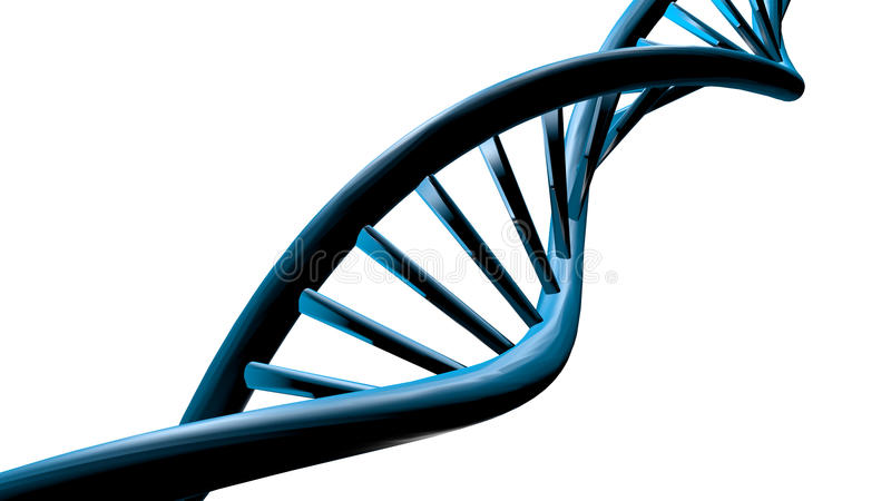 το τρισδιάστατο DNA τα σκέλη εικόνας ελεύθερη απεικόνιση δικαιώματος