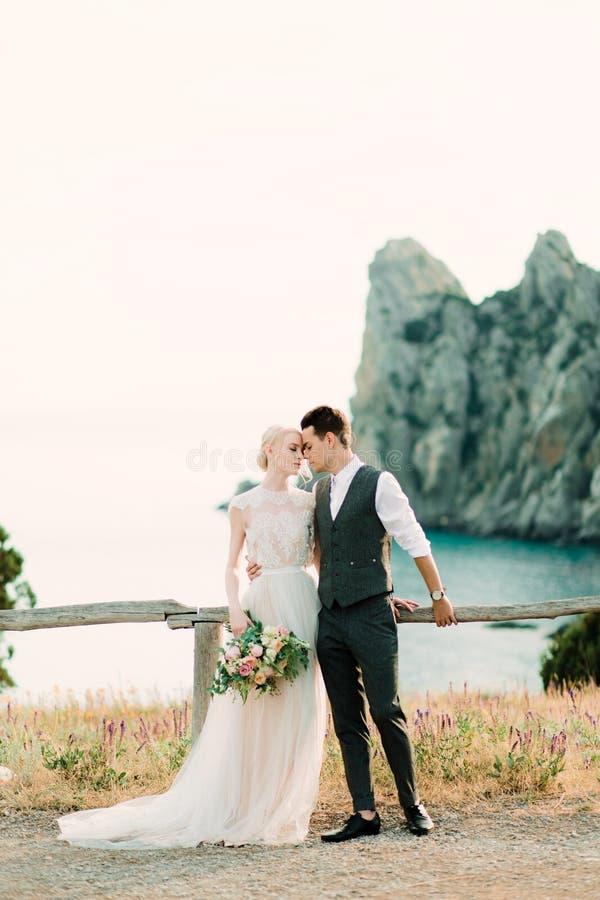 Το τρομερό πορτρέτο της νύφης και ο νεόνυμφος αγκαλιάζουν το ένα το άλλο τρυφερό στοκ φωτογραφίες με δικαίωμα ελεύθερης χρήσης