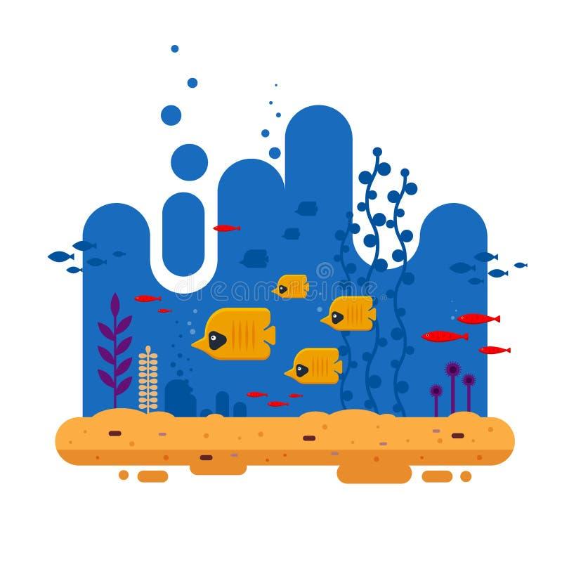 Το τροπικό ψάρι πεταλούδων κοπαδιών κολυμπά στο βάθος μεταξύ άλλων ψαριών, του ζωηρόχρωμου υποβρύχιου κόσμου με το φύκι και της ά ελεύθερη απεικόνιση δικαιώματος
