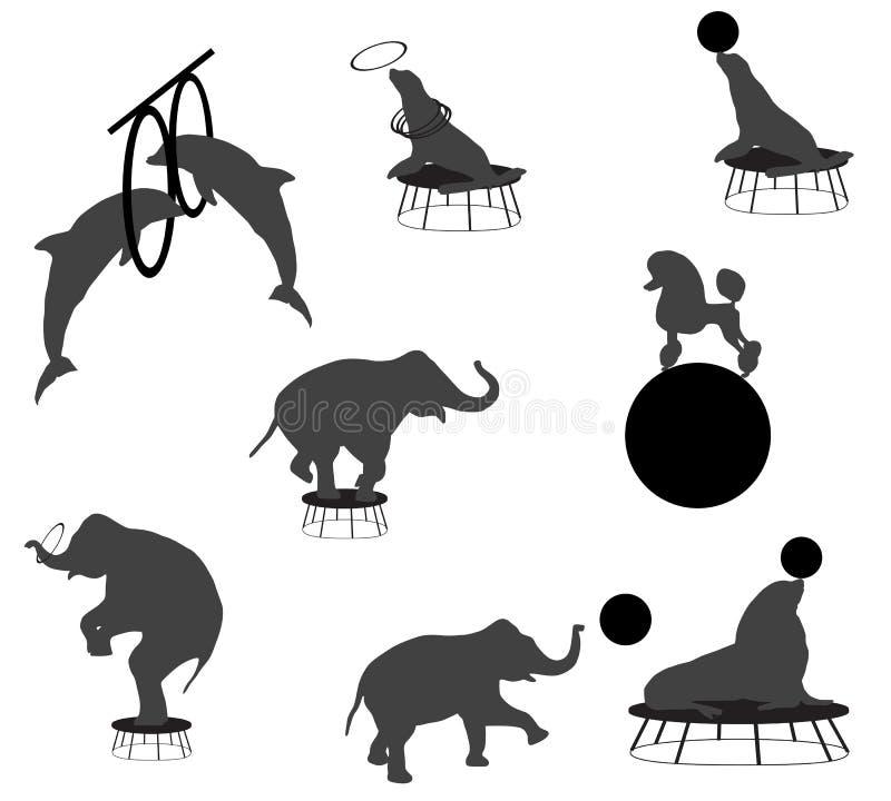 Το τσίρκο παρουσιάζει ελεύθερη απεικόνιση δικαιώματος