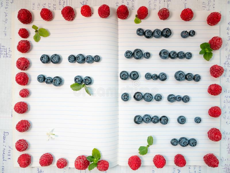 Το φανταχτερό δημιουργικό copybook γέμισε με τις γραμμές φιαγμένες από υγιή γλυκά και που διακοσμήθηκαν με το πλαίσιο σμέουρων κα στοκ εικόνες