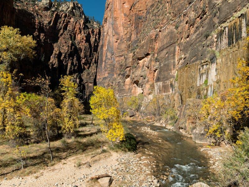 Το φαράγγι στενεύει κατά μήκος του ποταμού της Virgin σε Zion στοκ φωτογραφίες