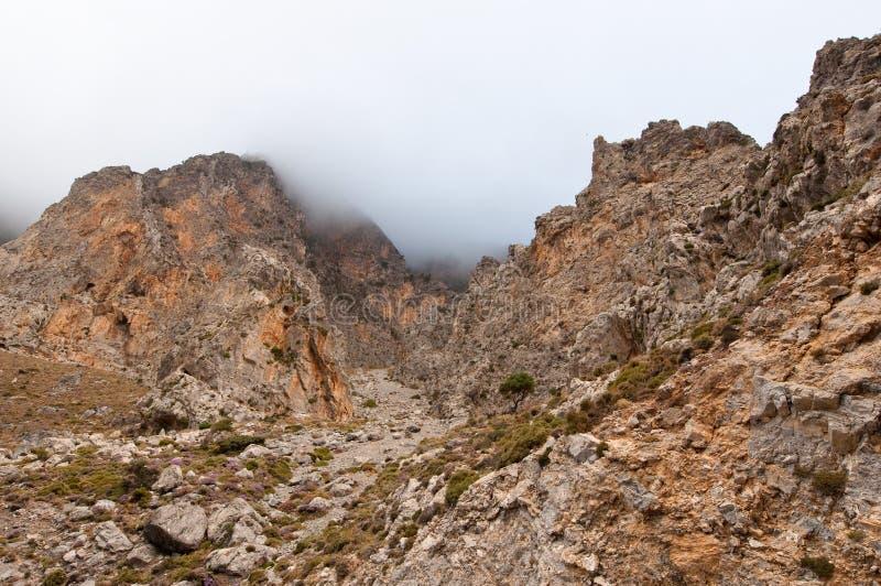 Το φαράγγι Kourtaliotiko, λεπτομέρεια Κρήτη Ελλάδα στοκ φωτογραφία με δικαίωμα ελεύθερης χρήσης