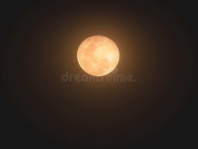 Το φεγγάρι είναι ακτινοβόλο κίτρινο στοκ εικόνα