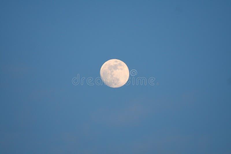 Το φεγγάρι στη χρυσή ώρα στοκ εικόνες