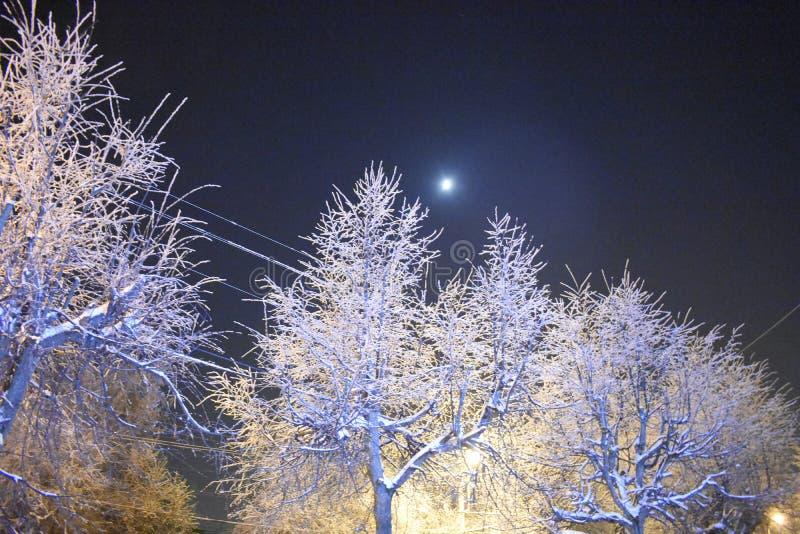 Το φεγγάρι στον ουρανό altay καλυμμένη οδός της Σιβηρίας νύχτας λαμπτήρων υγείας belokurikha θέρετρο eps πόλεων jpg ορίζοντας νύχ στοκ φωτογραφία με δικαίωμα ελεύθερης χρήσης