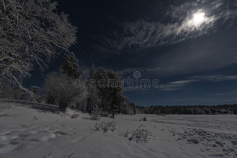 Το φεγγαρόφωτο χειμερινό τοπίο Lappish με το δάσος και η λίμνη στο μπλε ουρανό με το πλήρες σύννεφο κάλυψαν το φεγγάρι στοκ εικόνα