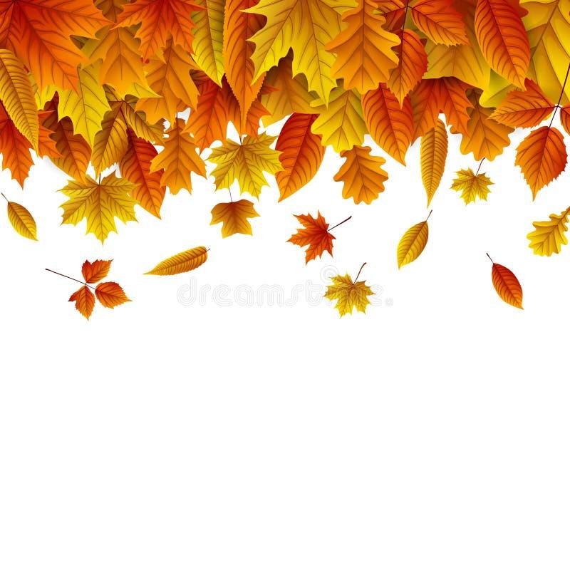 Το φθινόπωρο αφήνει την πτώση απομονωμένη στο άσπρο υπόβαθρο ελεύθερη απεικόνιση δικαιώματος