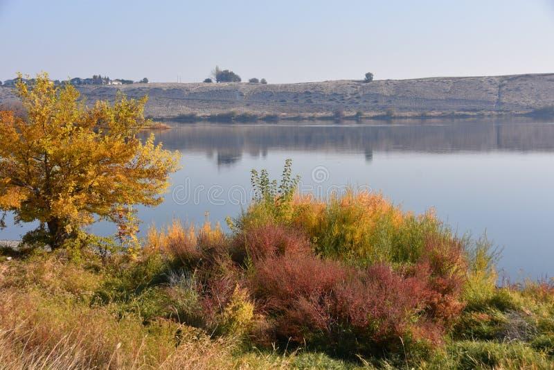 Το φθινόπωρο φεύγει και καρύκευμα χλοών επάνω στο σκηνικό ερήμων Dun κατά μήκος του ποταμού της Κολούμπια στοκ εικόνες