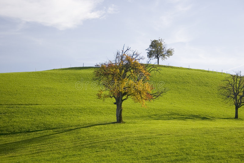 το φθινόπωρο χρωματίζει ΙΙ στοκ εικόνες