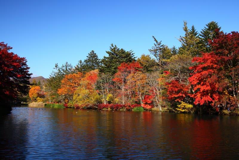 Το φθινόπωρο χρωματίζει τη λίμνη στοκ φωτογραφίες