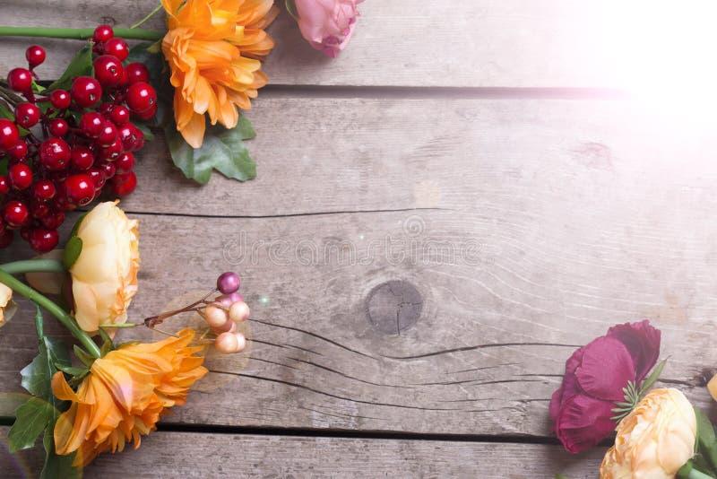 το φθινόπωρο χρωματίζει τ&alph στοκ εικόνα