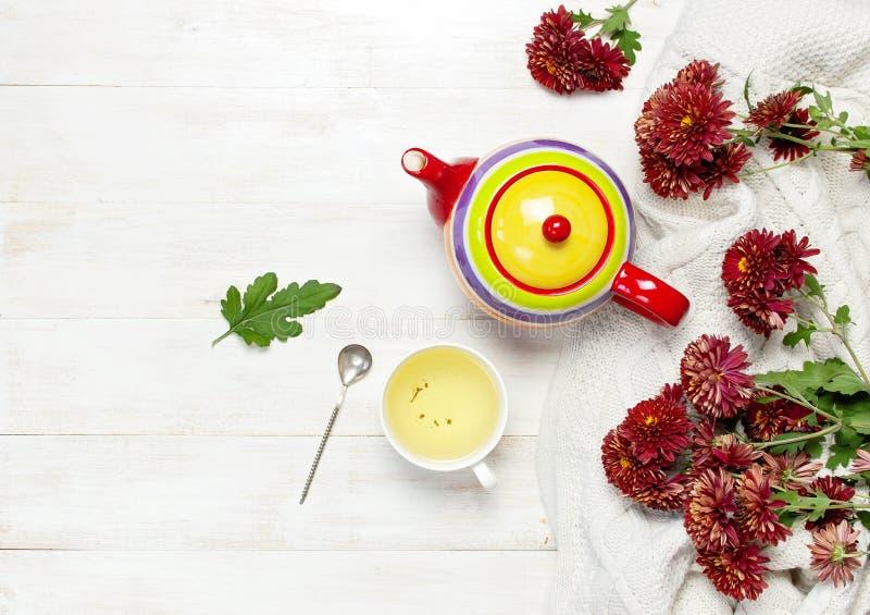 Το φλυτζάνι του καυτού βοτανικού τσαγιού, φωτεινό χρωματισμένο teapot, του πλεκτού καρό ή του πουλόβερ, κόκκινο χρυσάνθεμο φθινοπ στοκ φωτογραφίες με δικαίωμα ελεύθερης χρήσης