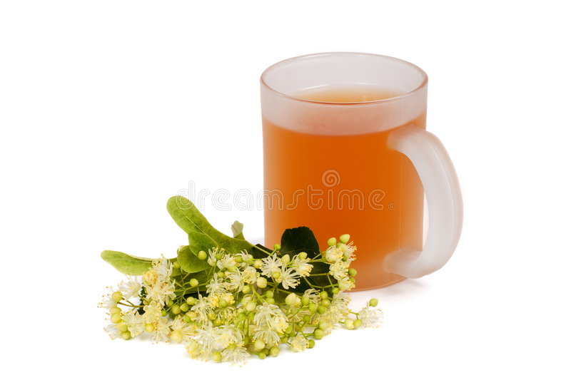 το φλυτζάνι το τσάι στοκ φωτογραφίες με δικαίωμα ελεύθερης χρήσης