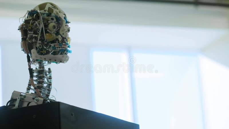Το φουτουριστικό θηλυκό ρομπότ humanoid είναι μη απασχόλησης Έννοια του μέλλοντος Το κεφάλι ενός αρρενωπού ρομπότ humanoid humano στοκ εικόνες