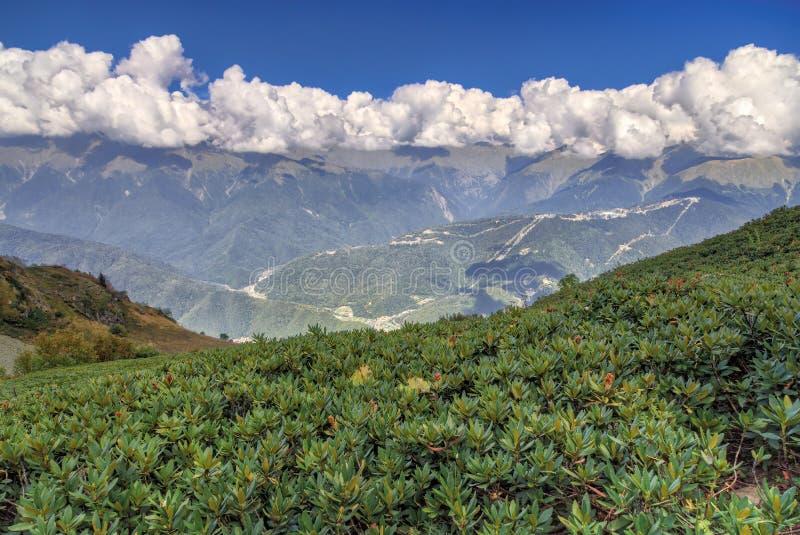 Το φυσικό τοπίο των καυκάσιων βουνών που καλύπτονται με τη σειρά του σωρείτη καλύπτει την ηλιόλουστη θερινή ημέρα κάτω από το μπλ στοκ φωτογραφία