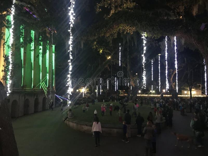 Το φως διακοπών φω'των νύχτας Cougar παρουσιάζει στο κολλέγιο του Τσάρλεστον στοκ φωτογραφία