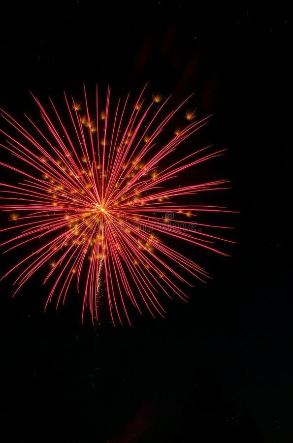 Το φωτεινό κόκκινο πυροτέχνημα μπροκάρ με το χρυσό ακτινοβολεί κυριώτερα σημεία ενάντια σε έναν μαύρο ουρανό στοκ εικόνες