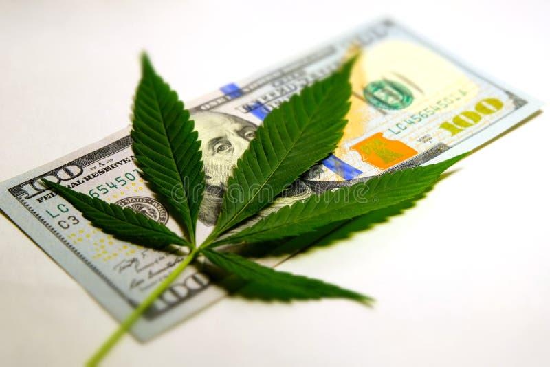Το φύλλο καννάβεων βρίσκεται στο λογαριασμό εκατό δολαρίων Χρήματα και μαριχουάνα Η έννοια της εμπορίας ναρκωτικών ή της νομιμοπο στοκ εικόνες