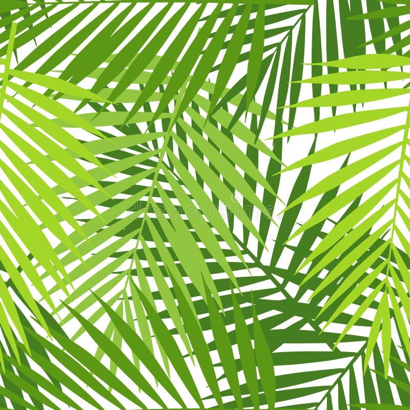 Το φύλλο φοινικών σκιαγραφεί το άνευ ραφής σχέδιο φύλλα τροπικά ελεύθερη απεικόνιση δικαιώματος