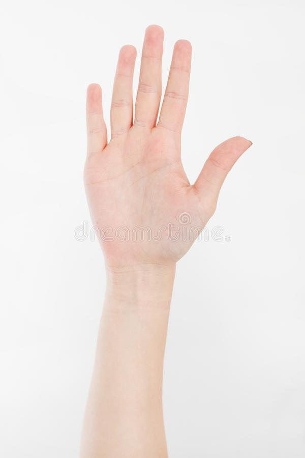 το χέρι απομόνωσε το λευ&ka Ψηφίζοντας χέρι Χλεύη επάνω διάστημα αντιγράφων Πρότυπο ήπια στοκ φωτογραφία με δικαίωμα ελεύθερης χρήσης