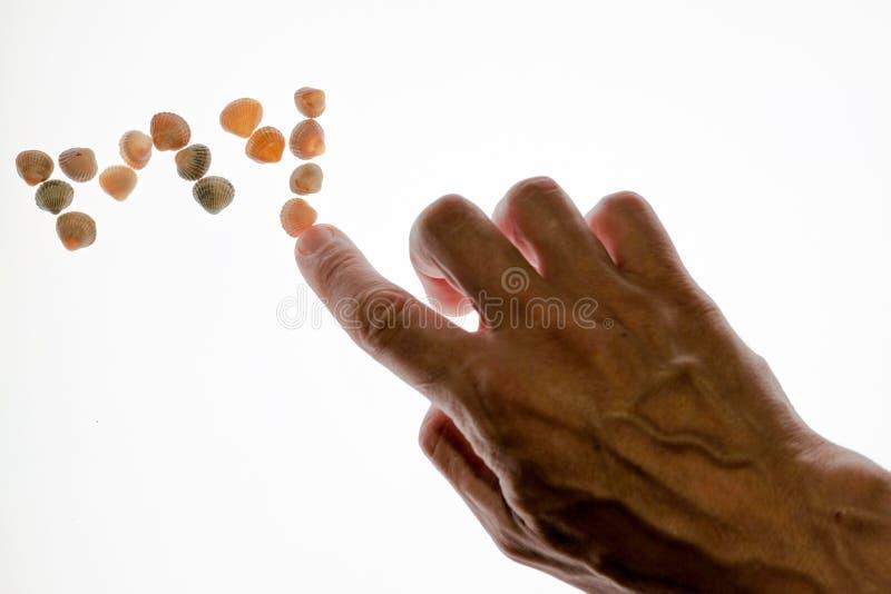 Το χέρι ατόμων ` s διαδίδει τη λέξη ΜΟΥ από τα κοχύλια Κινηματογράφηση σε πρώτο πλάνο απομονωμένος στοκ φωτογραφίες με δικαίωμα ελεύθερης χρήσης