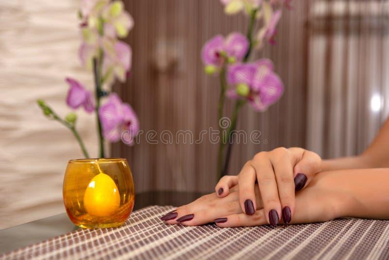 Το χέρι γυναικών με τα καρφιά χρώματος κρασιού γυαλίζει σε μια διακόσμηση γραφείων και κεριών σε ένα γραφείο στοκ φωτογραφία