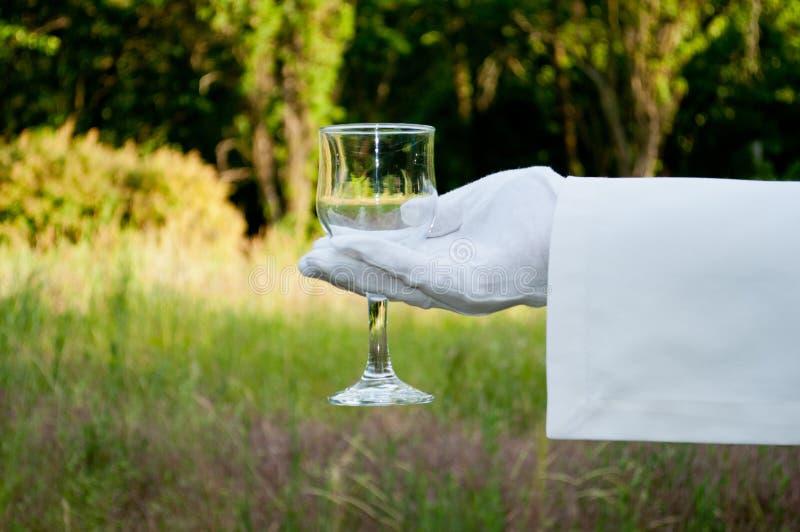 Το χέρι ενός σερβιτόρου σε ένα άσπρο γάντι κρατά ένα γυαλί στη φύση στοκ εικόνα